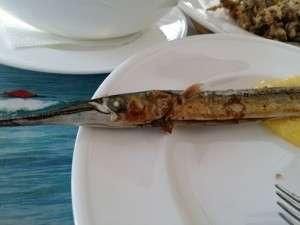 Herastrau - Cherhanaua Ancora a lui Marius Tuca - restaurant pescaresc 17