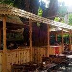 Gradina La Copac