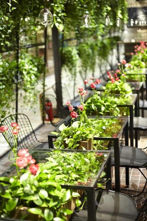 Aoyama Flower Market and Tea House // Sursa foto: universotokyo.com