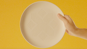 thai-absorbplate-hed-2016