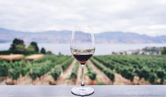 Degustare de vin – localuri de neratat pentru iubitorii de vin