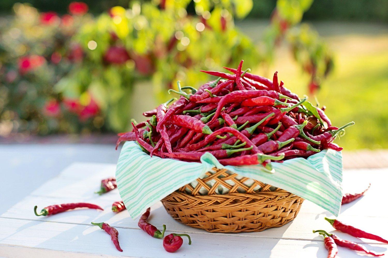 multi ardei cayenne, capsicum, intr-un cos de rachita cu servetel alb, unul din alimentele care taie pofta de mancare