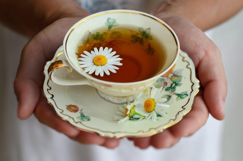 prim plan cu o ceasca de ceai tinuta intre doua maini, din portelan, cu farfurie, de culoare alba si desene florale, plina de ceai si cu frunze de musetel puse pe langa ceasca