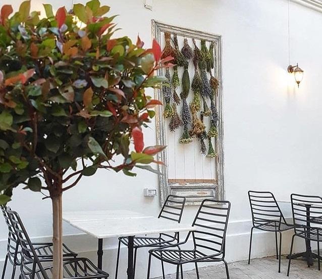 masa la restaurant anika, cu scaune negre si masa alba, iar pep perete o rama decorativa cu plante aromatice si un arbust decorativ in prim plan