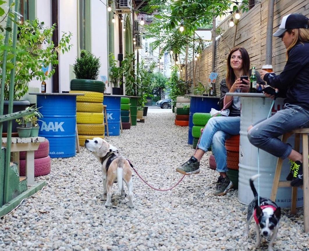 doua femei la terasa Flip FLop București, impreuna cu cainii lor, una din terase pet friendly