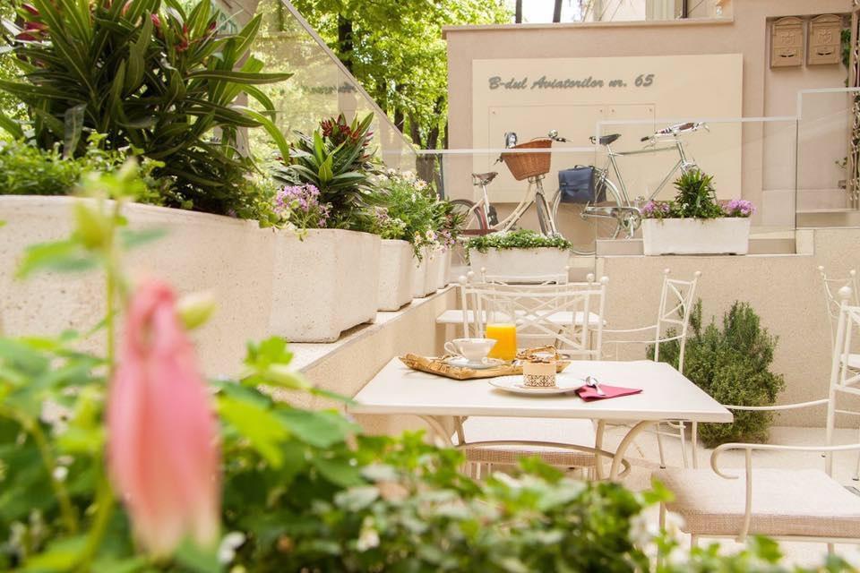 mese pe terasa de la Zexe Braserie Bucuresti, cu plante pe terasa si mobilier alb, una din terase pet friendly București