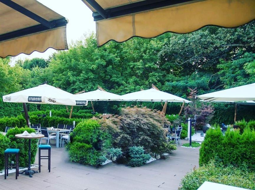 terasa de la Studio 80, cu umbrele albe si alei printre care sunt plante, imprejmuita de copaci