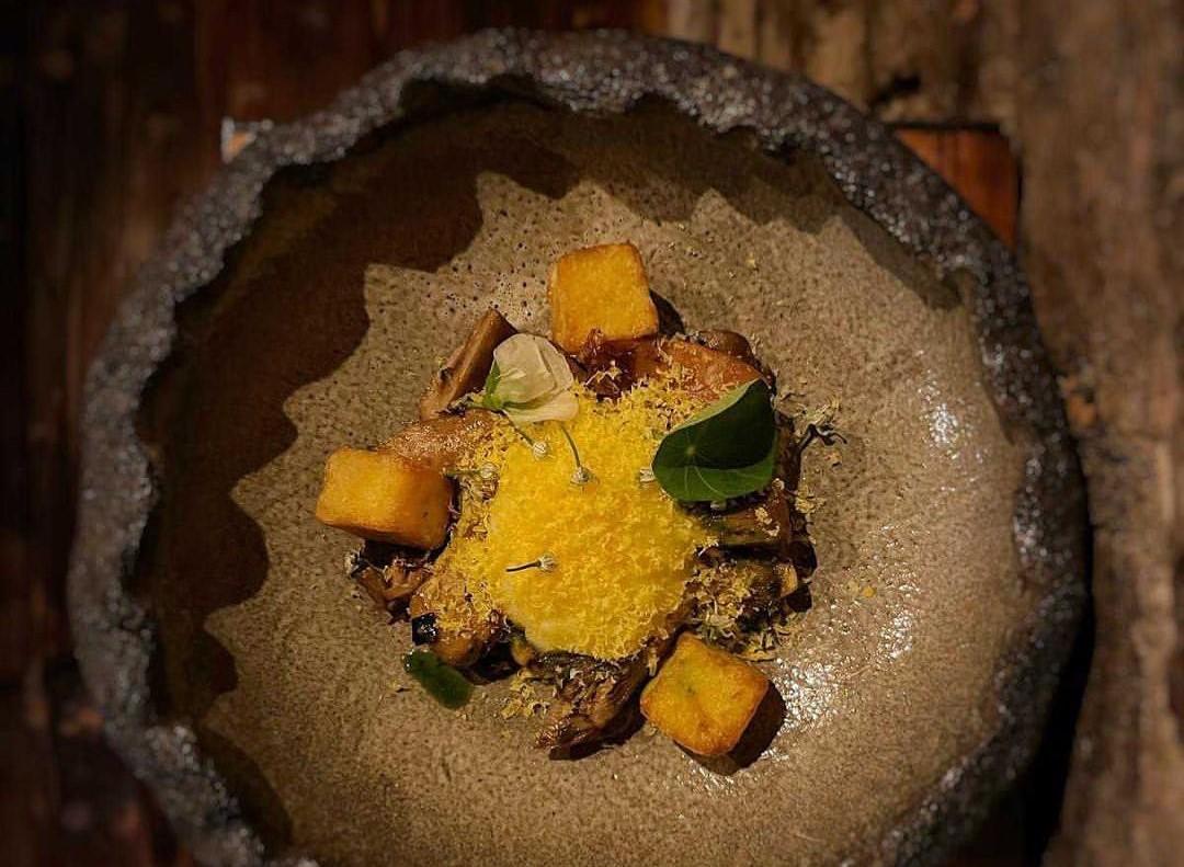 Farfurie maro cu design deosebit, in care se afla ciuperci de pădure gătite lent, mămăligă crocantă și ou moale, unul din preparate emblematice de la Ankia Restaurant București